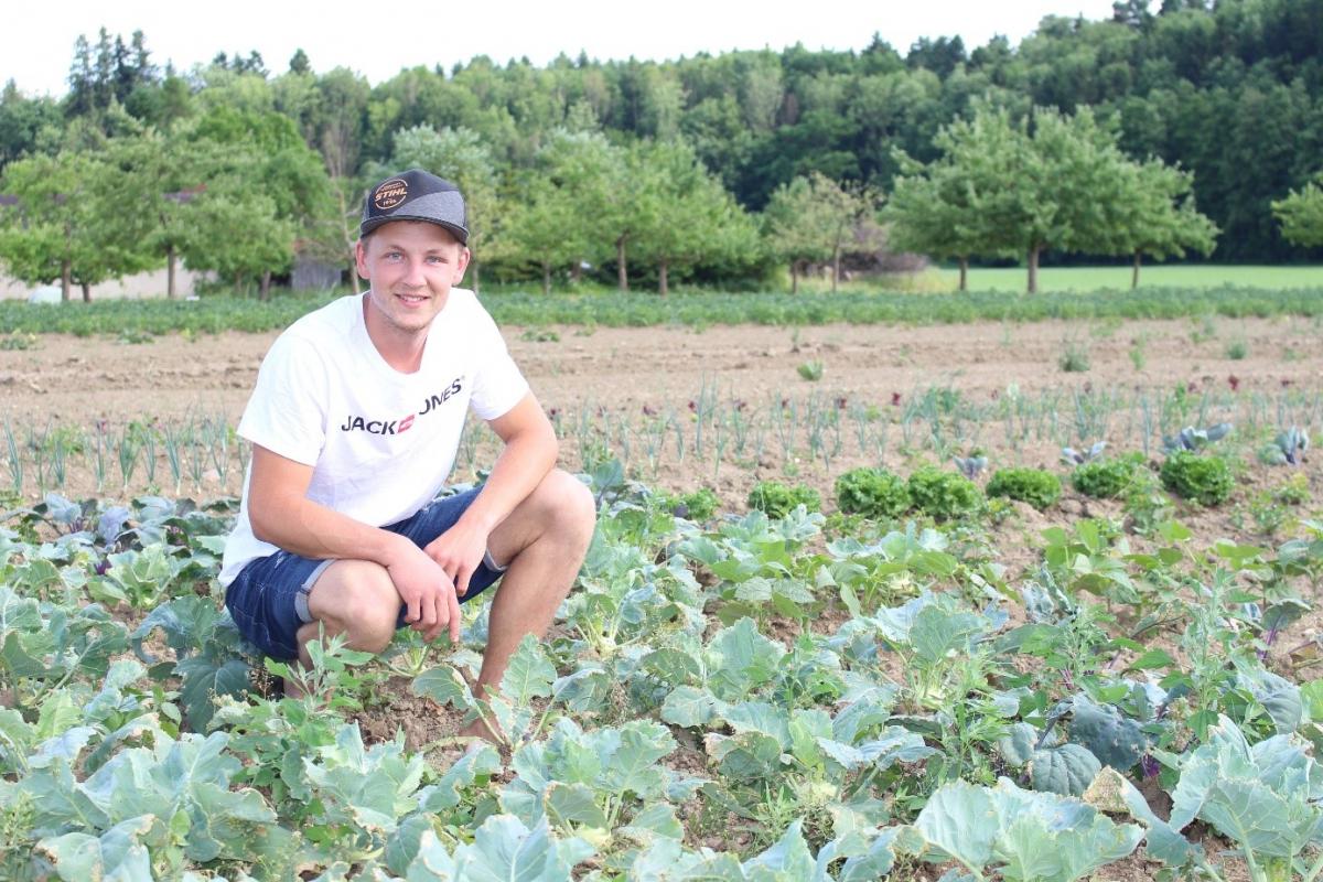 Rund zwanzig verschiedene Gemüsesorten baut Markus Hager in Bioqualität an. Hier ist er auf seinem Feld in Obergeisenfelden inmitten von Kohlrabi, Salat und Zwiebeln