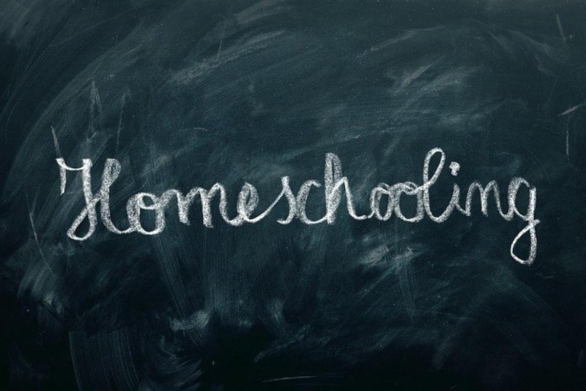 Schulvideos in großer Auswahl - nicht nur für Homeschooling