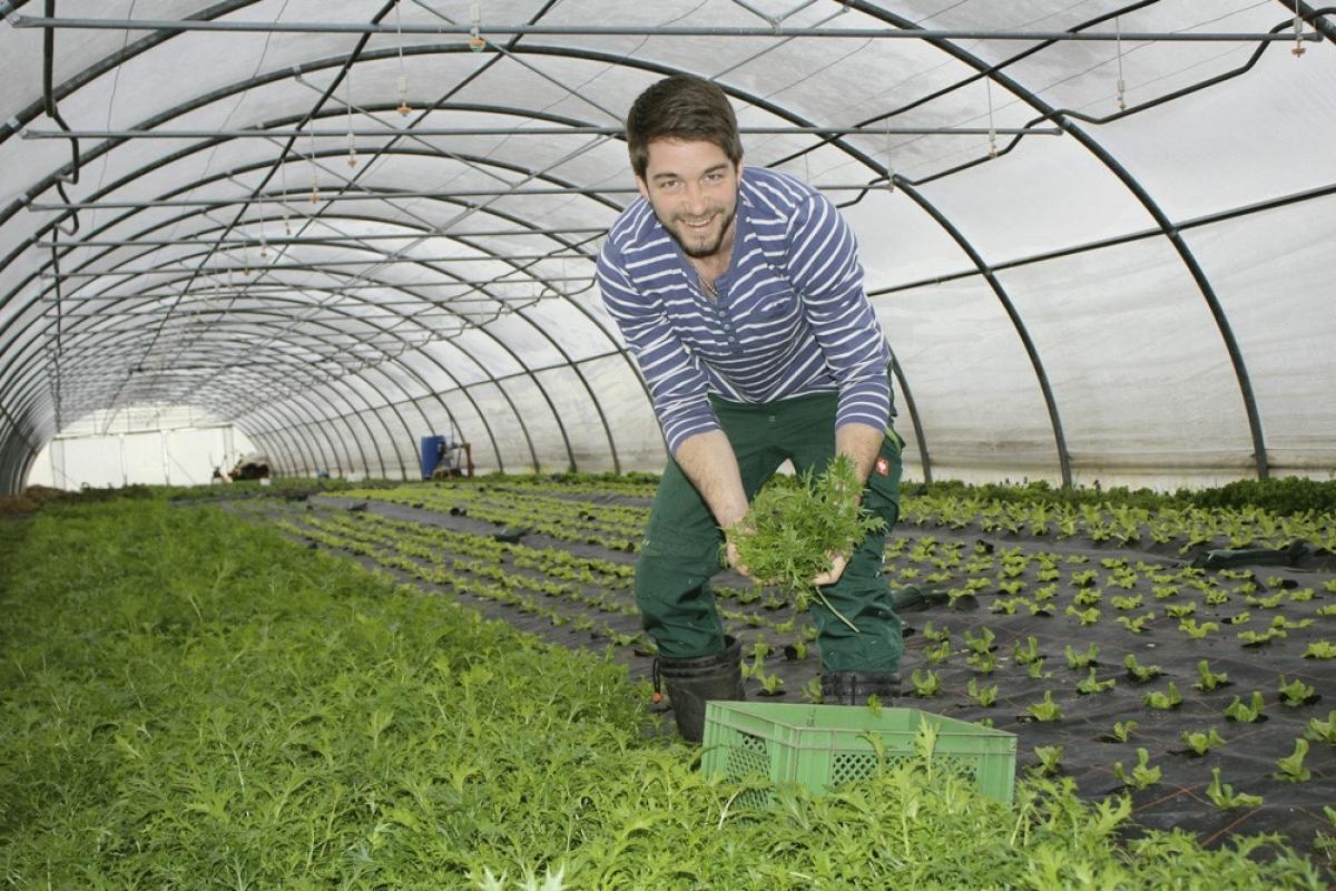 Michi Steinmaßl, Biogärtner aus Kirchanschöring, im Gewächshaus