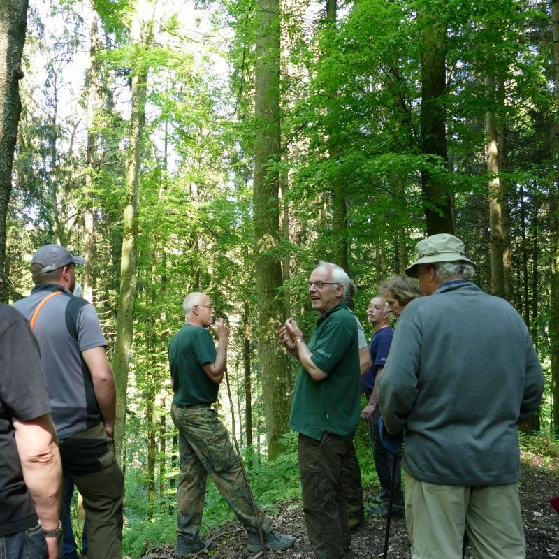 """""""Saum-Seligkeit"""" beim Waldbegang in der Ökomodellregion"""