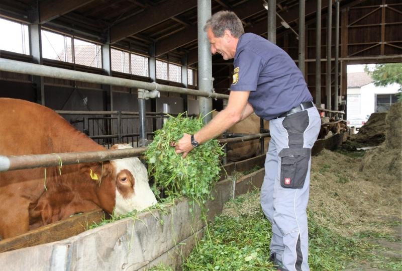 Peter Forster ist seit 30 Jahren Leiter des landwirtschaftlichen Betriebs in der Lebenau. Vor 15 Jahren hat er auf Bio umgestellt.