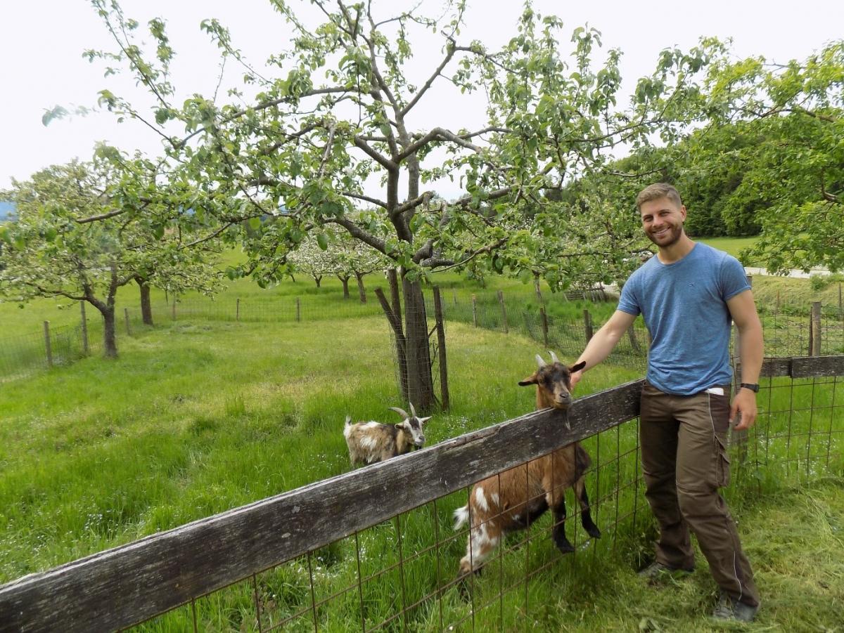 Franz Gramminger vor einem blühenden Streuobstgarten, in der diese beiden Ziegen als Helfer bei der Landschaftspflege eingesetzt werden.