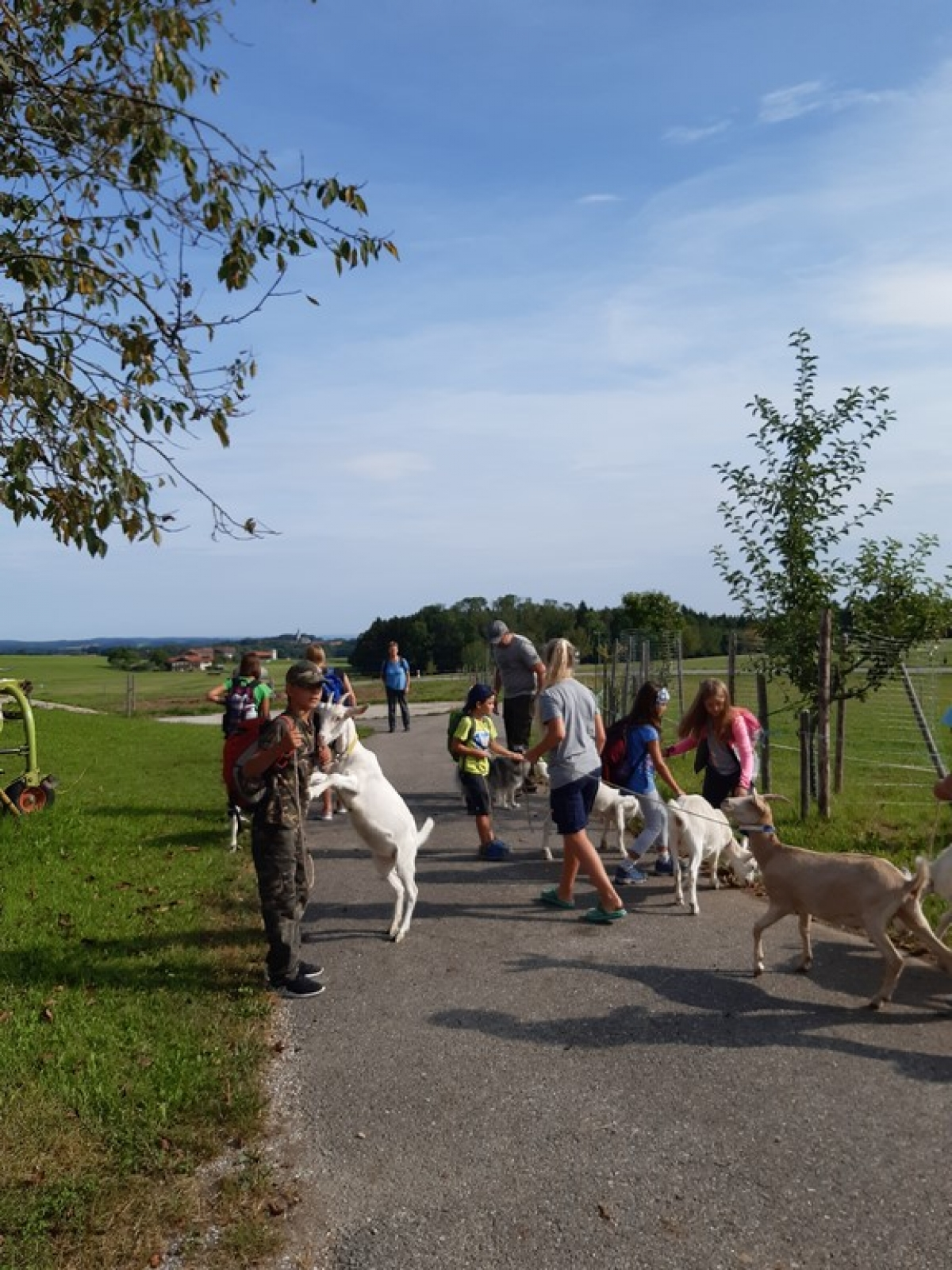 Ferienprogramm des Sportvereins Wonneberg