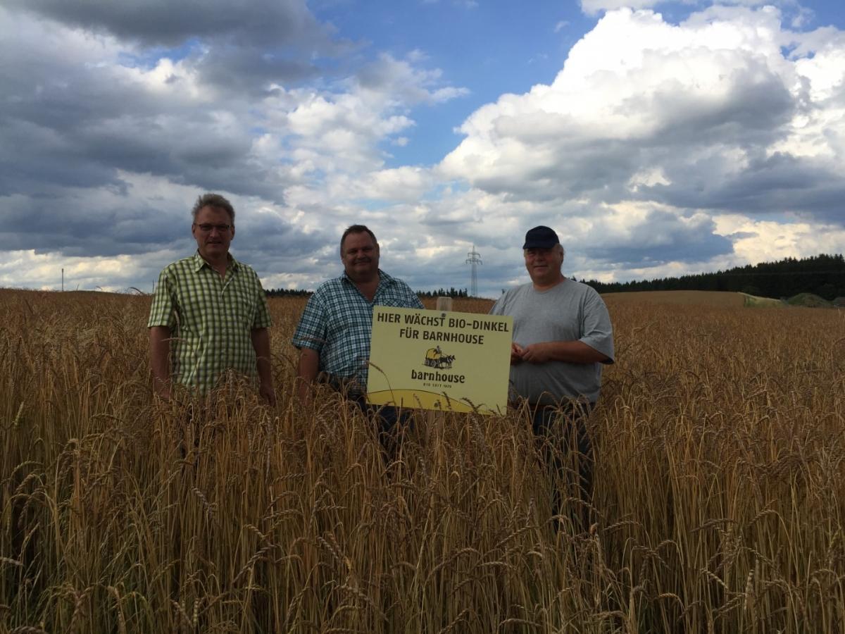 Barnhouse baut regionales Anbauprojekt für Biodinkel und Biohafer aus